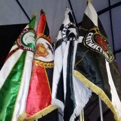 LIVE ENCONTRO DAS PAIX~ES REÚNE ESCOLAS DE SAMBA DE TORCEDORES DOS QUATRO GRANDES TIME DO RIO NESTE SÁBADO
